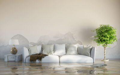 Wasserschaden – so wird die Wohnung wieder trocken