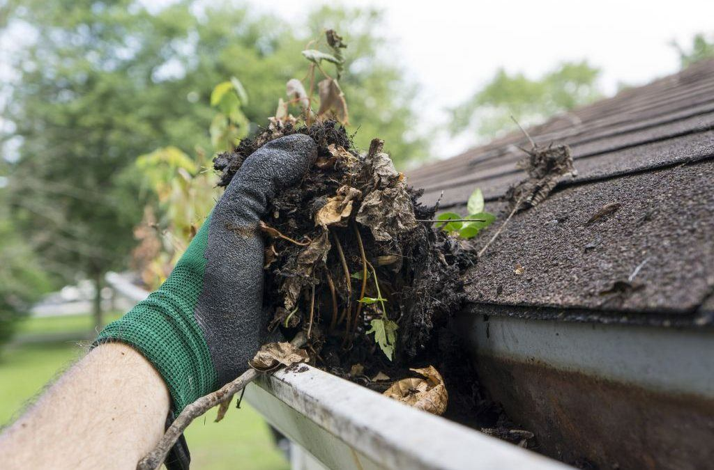 Wie Sie in 4 Schritten Ihre Dachrinne reinigen